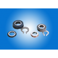 Submersible Pump Seal 001